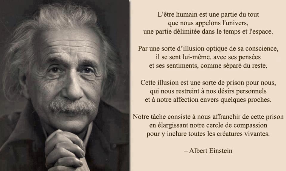Citation A Einstein